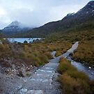 Dove Lake, Cradle Mountain by Gayan Benedict