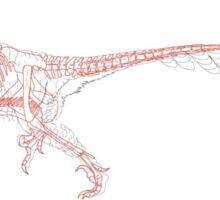 Deinonychus Skeletal Sticker