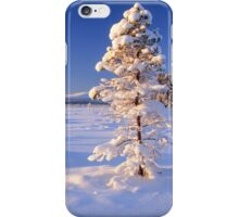 Snow covered trees in north Sweden iPhone Case/Skin