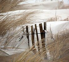 Sand and Snow by Florence Womacks