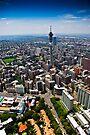 Aerial View of Jozi by RatManDude