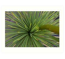 Grass Tree Art Print