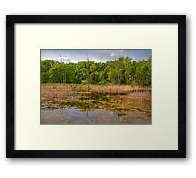 Horicon National Wildlife Refuge Framed Print