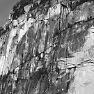 Stawamus Chief by titus