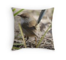 Superb Blue Fairy-wren Throw Pillow