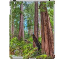 Scary tall Redwoods that stand high in their forest iPad Case/Skin