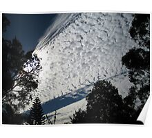 Clouds,streaks of sky and trees. Poster