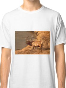 Bull Elk   #0736 Classic T-Shirt