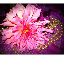 Dahlia - A Sweet flower with pearls Photographic Print