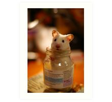 Hamster in a jar Art Print