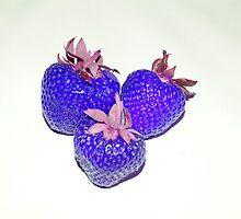 Dark Blue Strawberries! by Sandra Cockayne
