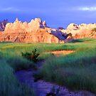 South Dakota Badlands by Bill Morgenstern