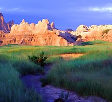 South Dakota Badlands by Bill Morgenstern