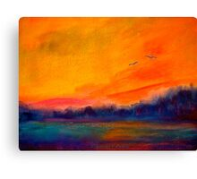Landscape...In Flight Canvas Print