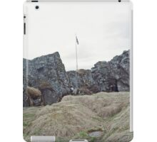Flagpole iPad Case/Skin