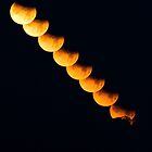 Lunar Eclipse  by Jay Stockhaus