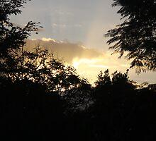 sunrays by aussieazsx