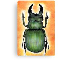 Technicolour Beetle Canvas Print