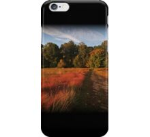 Color Trail iPhone Case/Skin