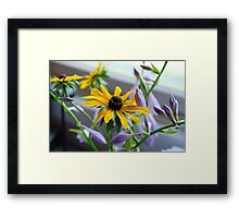 Sister Love.... Framed Print