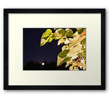 Moony Mood Framed Print