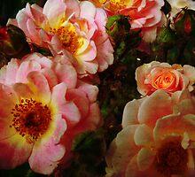 Vintage Roses. by Vitta
