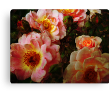 Vintage Roses. Canvas Print
