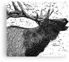 Woodcut Bull Elk Canvas Print