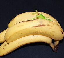 Daft Bananas!! by Sandra Cockayne