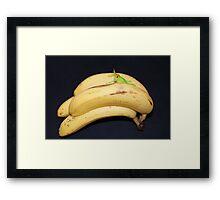Daft Bananas!! Framed Print