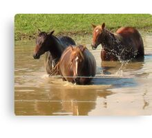 """Horses with Attitude no. 5, 'Hey...Youse Guys, I'm Still Talkin'""... prints and products        Canvas Print"