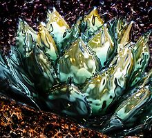 Glass Agave by Barbara D Richards