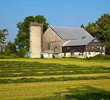 Hay Harvest by RandiScott