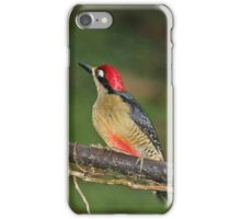 Pair of Black-Cheeked Woodpeckers iPhone Case/Skin