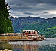 Abandoned Boat On Loch Ness. by Aj Finan