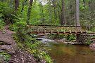 Evergreen Trail Footbridge by Gene Walls