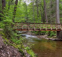 Evergreen Trail Footbridge by Gene Walls