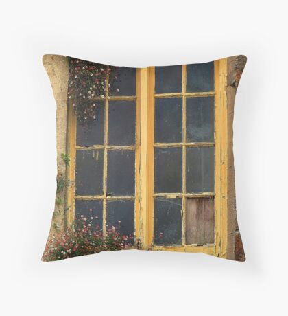 Every nook and cranny Throw Pillow