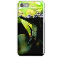Baby Crocodiles Above and Below iPhone Case/Skin