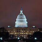 The Capitol by mertozgur