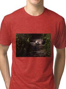 Sleeping kitty Tri-blend T-Shirt