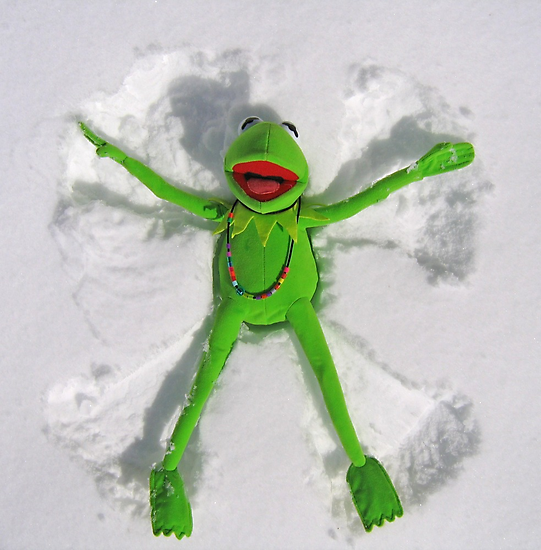 Kermit Snow Angel (1st place Boston Globe) by David Tiller