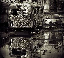 Reflection in DuoTone by Bill Atherton