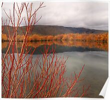 Twizel Reflections Poster