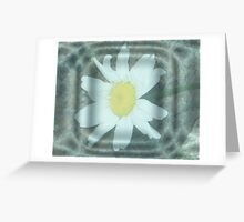 Reflective Beauty Greeting Card