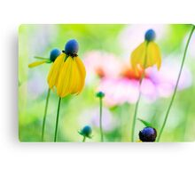 Prairie Wildflowers Metal Print