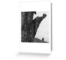 Dead Wood On The Murray Greeting Card