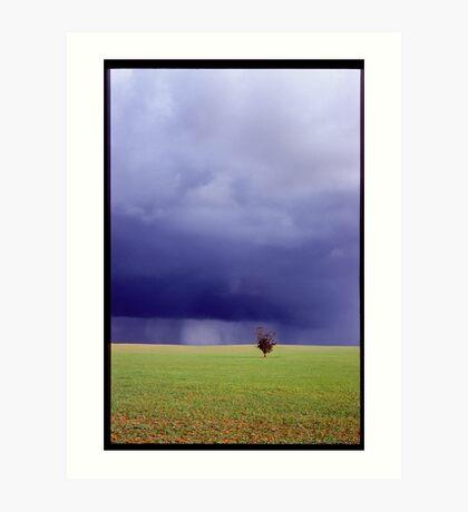 Coming Rain, Mallee Art Print