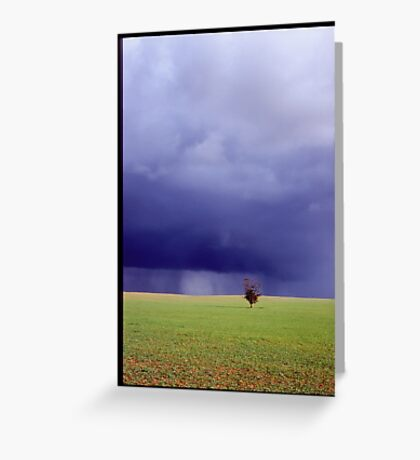 Coming Rain, Mallee Greeting Card