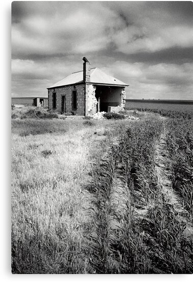 Bowhill House Ruin, South Australia by Ty  Mickan